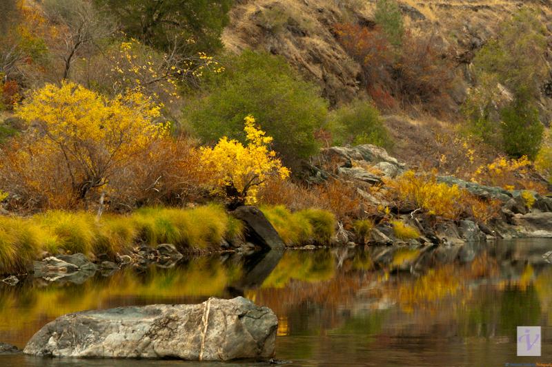 Merced river, Yosemite.