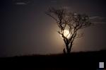 Super-moon.