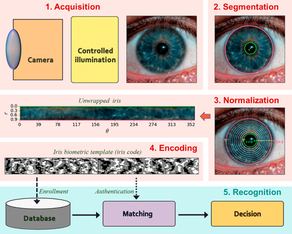 Iris recognition pipeline